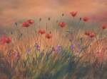 Poppies-in-oil